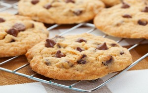 Chocolate Chip Cookie Throw Don